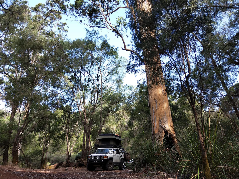 4 X 4 Australia Reviews 2021 May 2021 2013 Toyota FJ Cruiser Readers Rig
