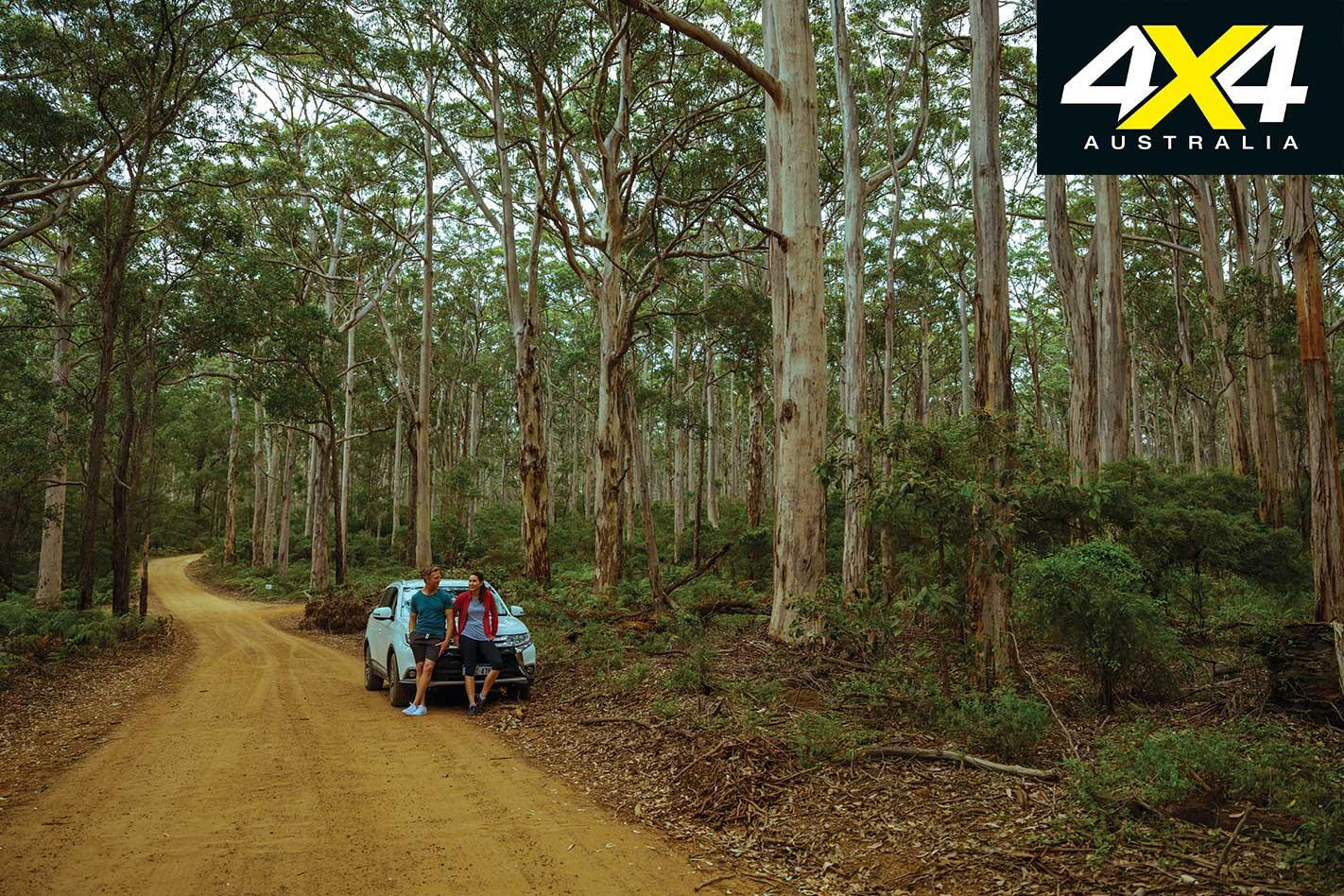 Perth Escapes Leeuwin Naturaliste National Park Boranup Karri Forest Jpg