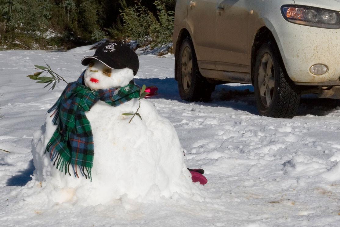 Snowman Embed Jpg
