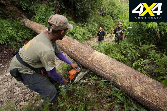 Rainforest Challenge Adventure Tour 2019 Chainsaw Track Jpg