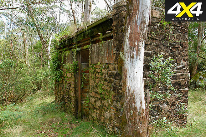 Old building block covered with moss
