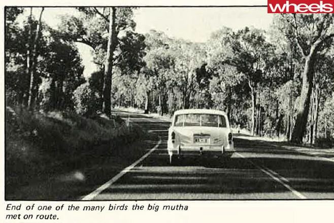 1977-Ford -Falcon -rear