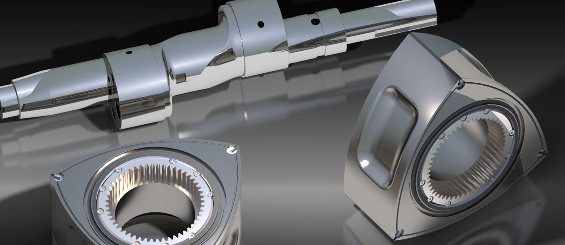 Rotary engine internal components