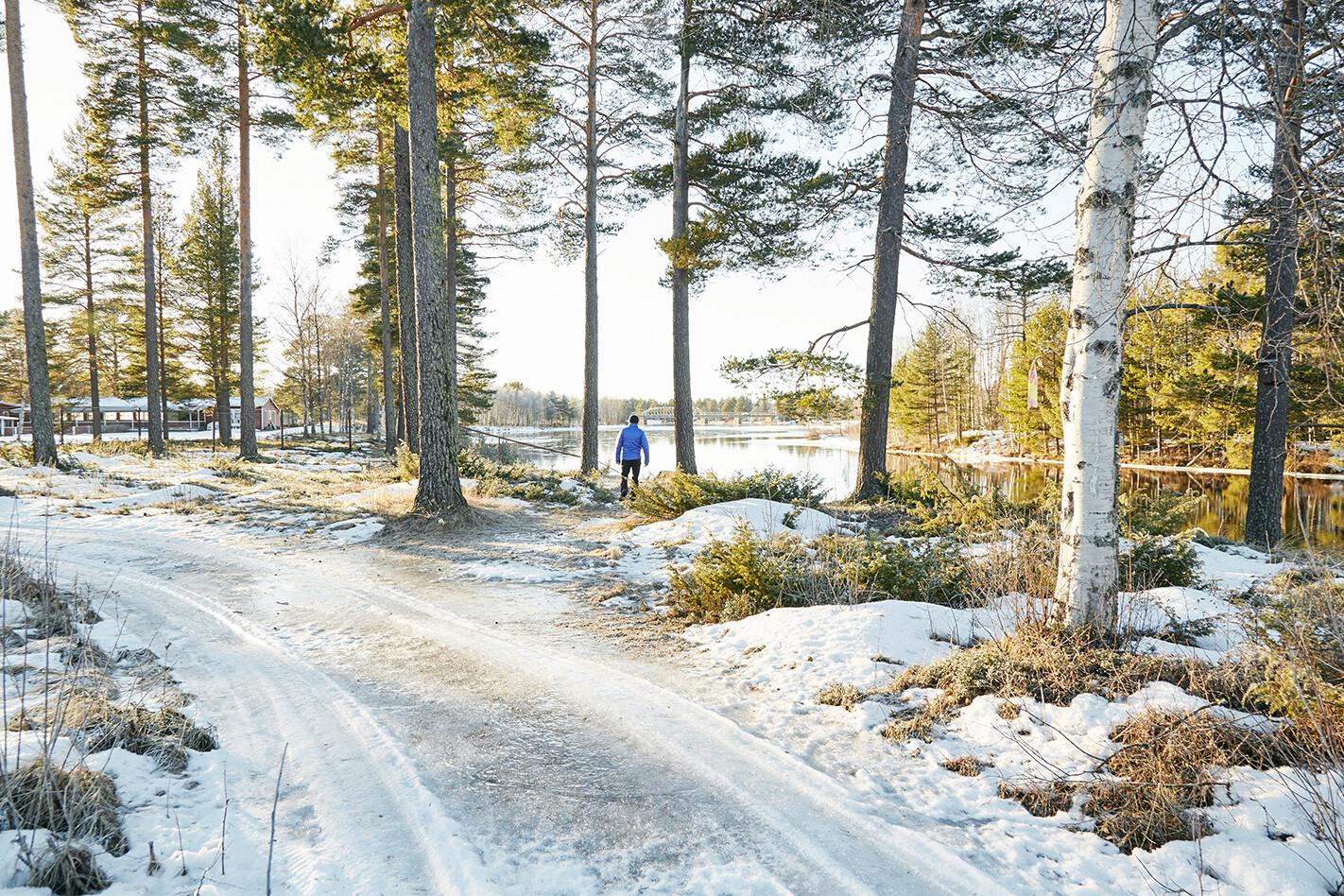 Volvo V 90 Landscape Faviken Jpg
