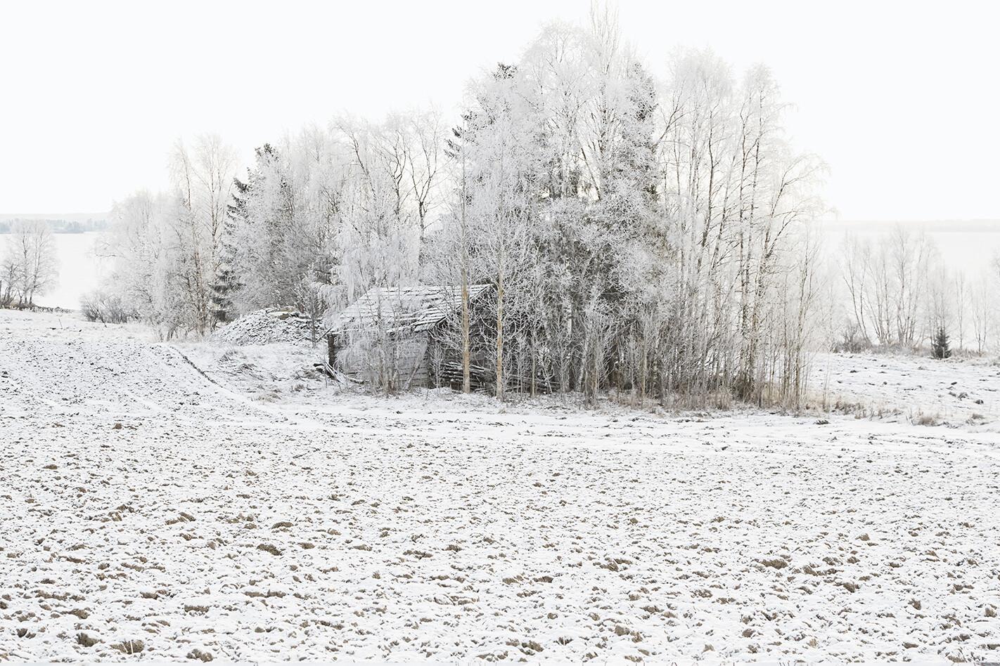 Volvo V 90 Landscape Faviken 3 Jpg