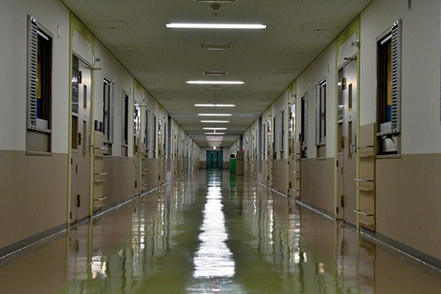 Ghosn Corridor Jpg
