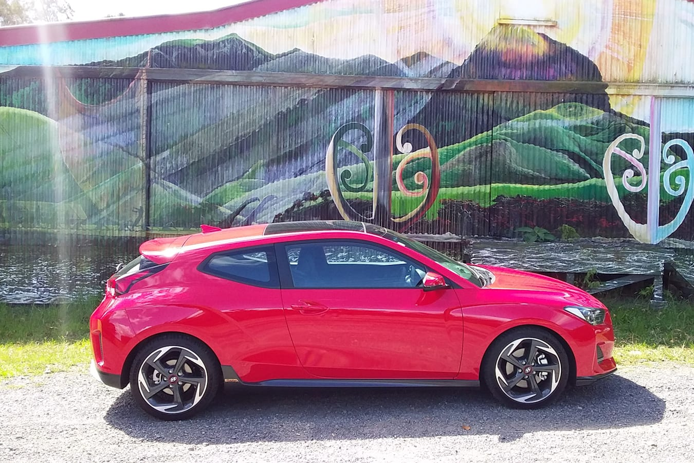 Veloster and New Zealand traditional art