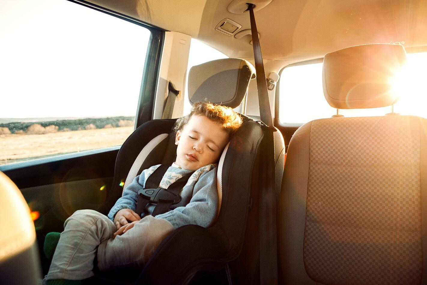 Babyseat 01 Jpg