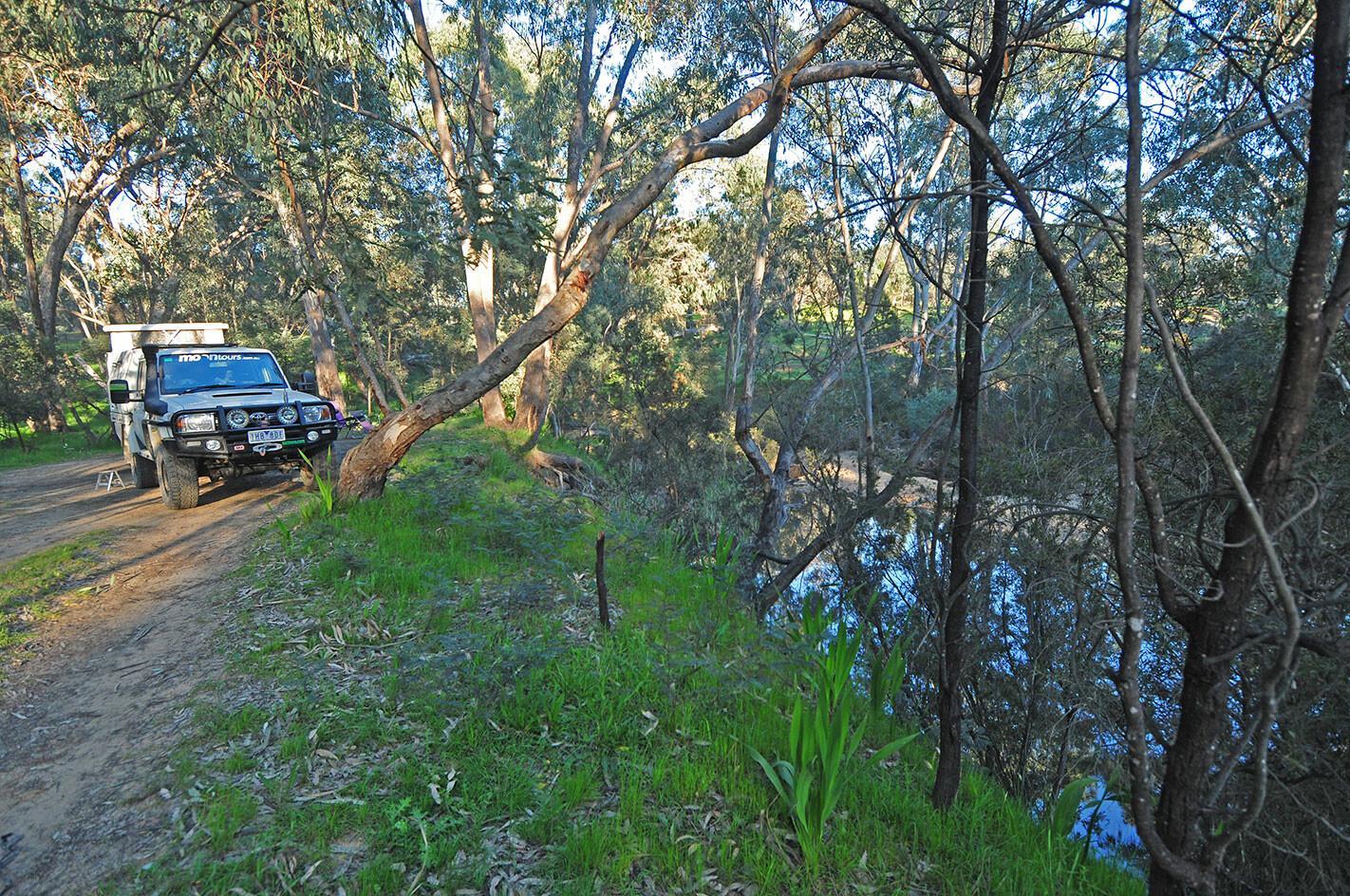 Reedy Creek Campe