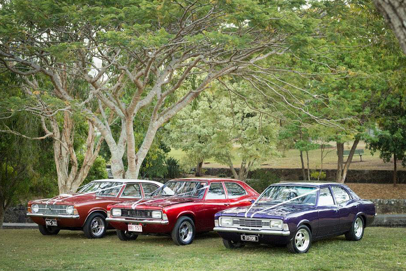 Darren McClure's wedding cars