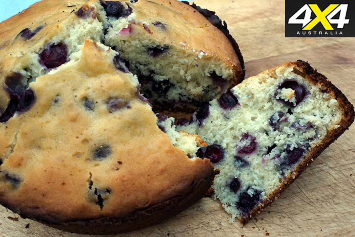 Giant Blueberry Camp Oven Muffin