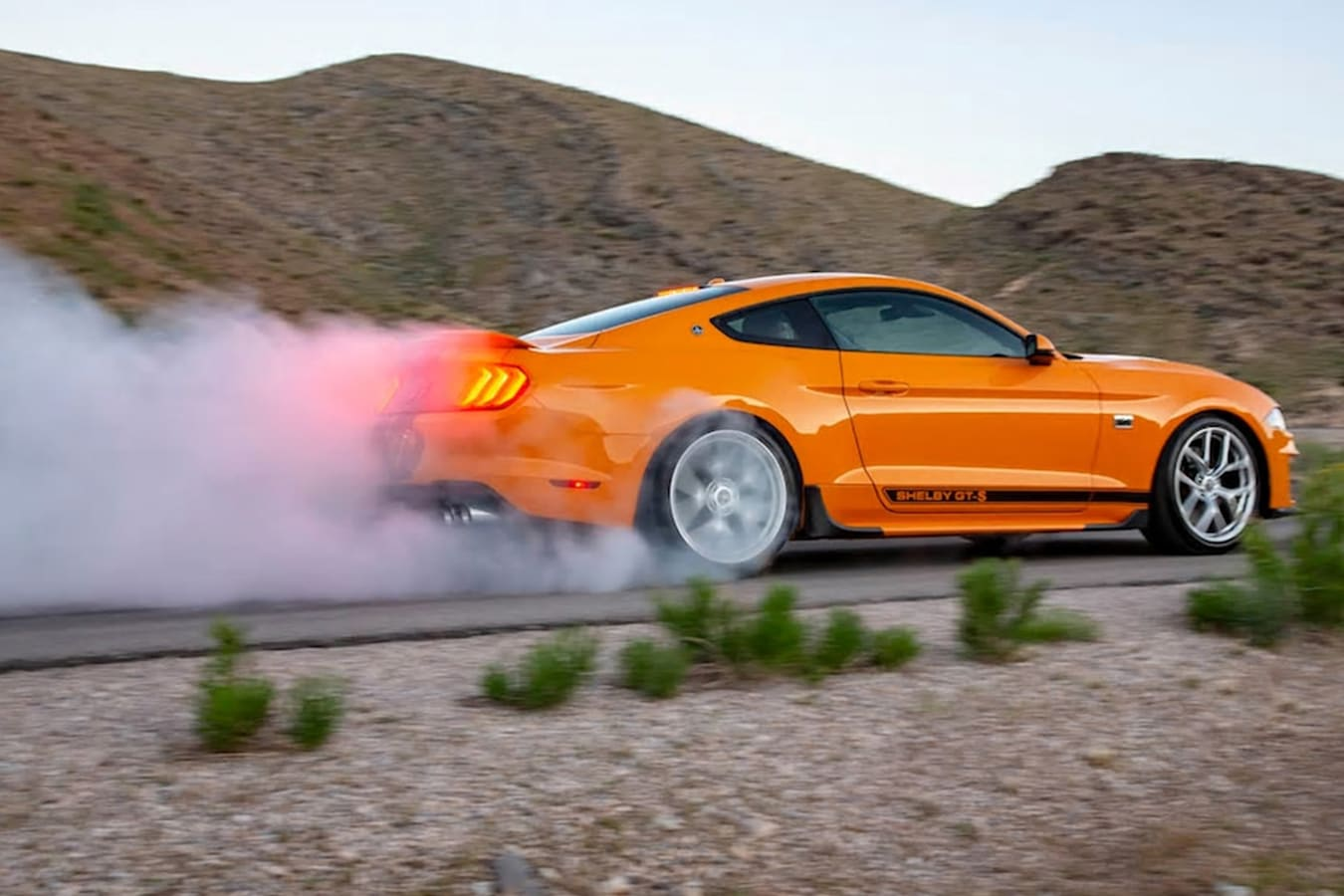 Ford Mustang Shelby Jpg