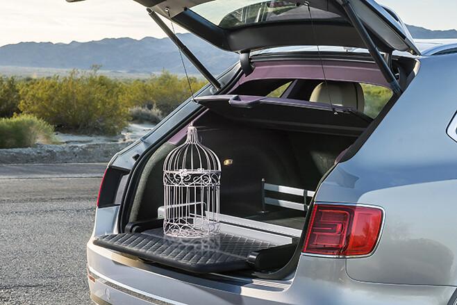 Bentley Bentayga falconry edition rear