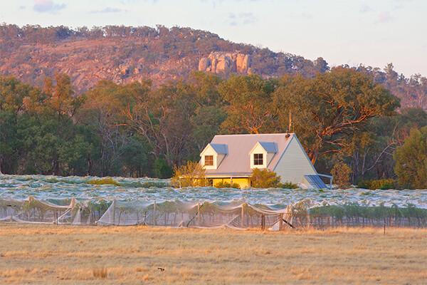 Maygars Hill