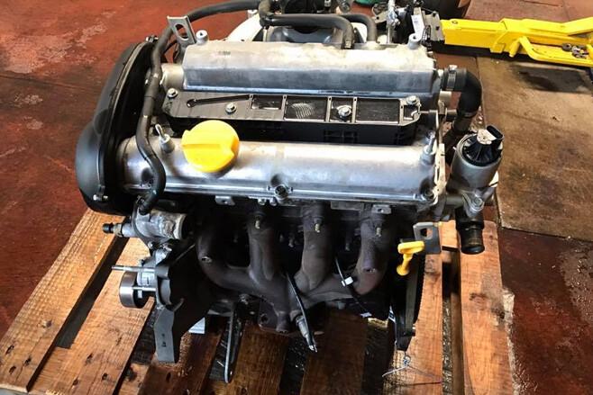 Kym Rapisarda ecotec engine