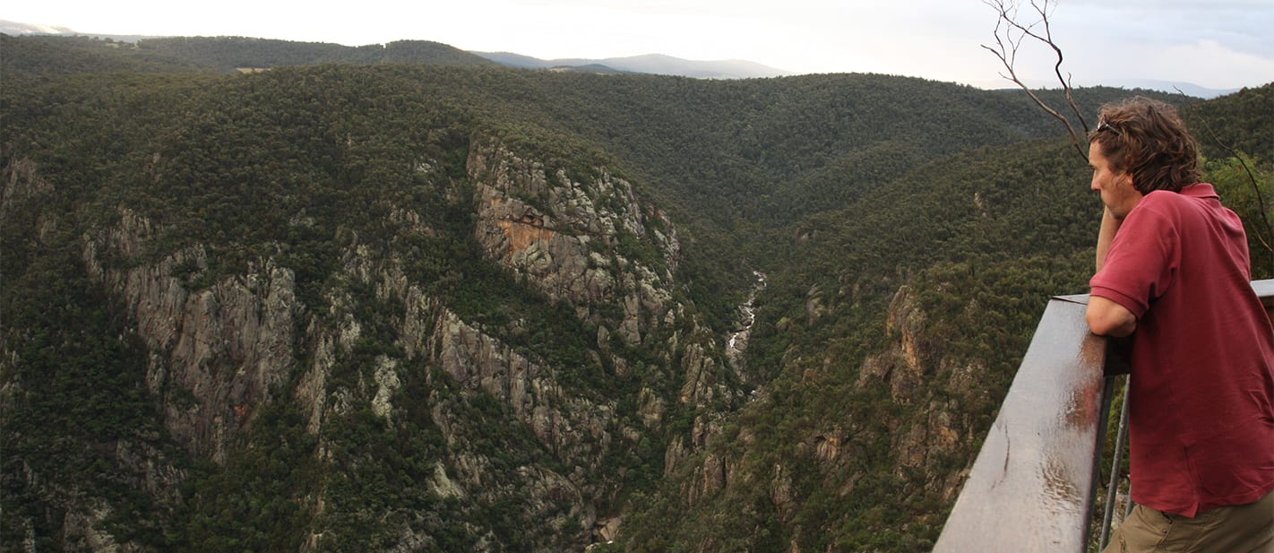 The spectacular Little River Gorge lookout