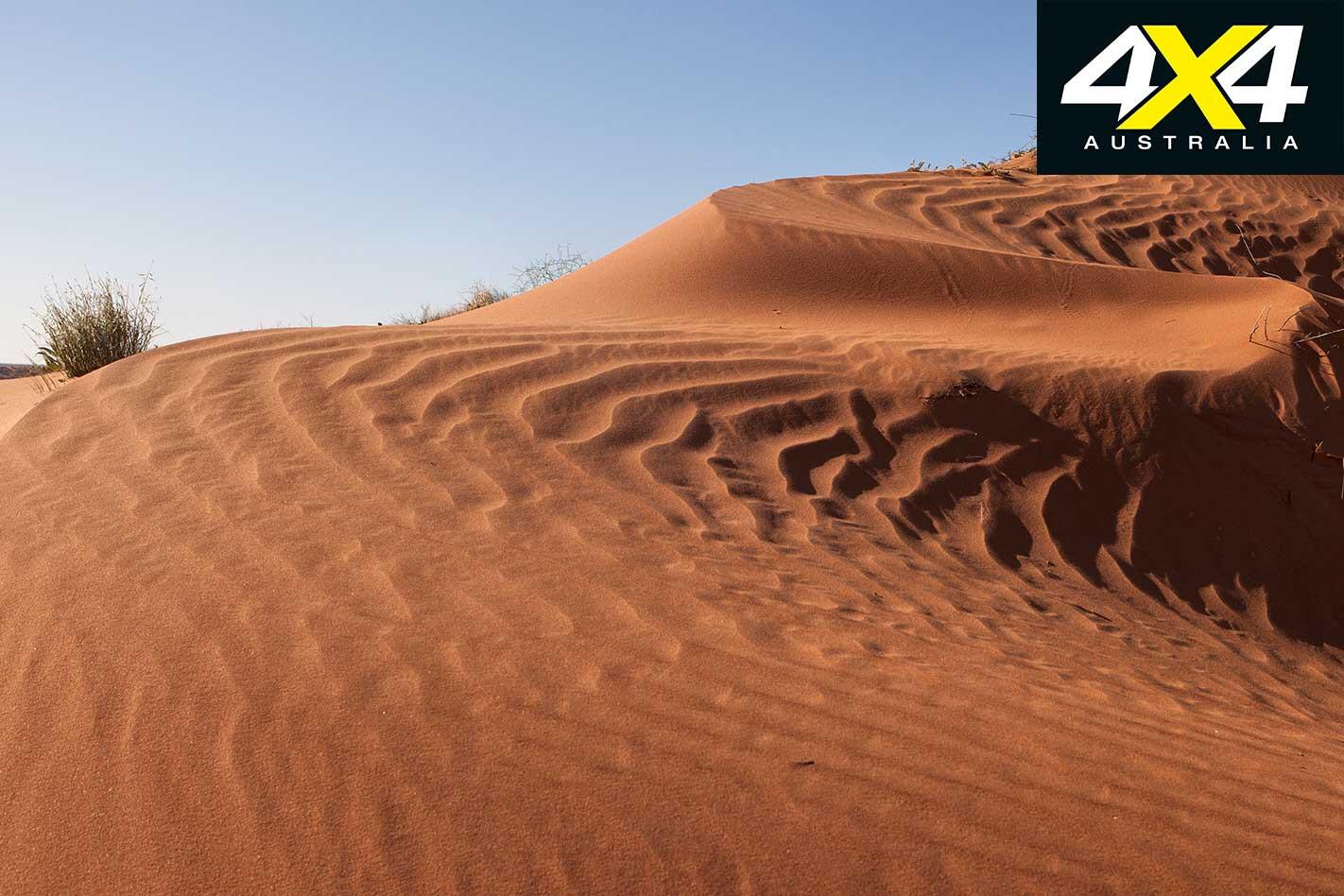 Simpson Desert Dunes Jpg