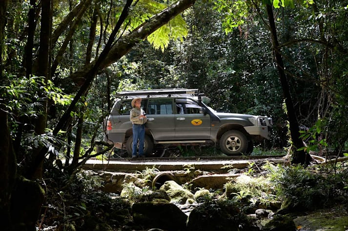 Mount Lewis National Park QLD 4x4 travel guide