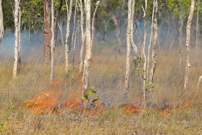 Ngukkur-and-The-Ruin-City,-Northern-Territory-fire