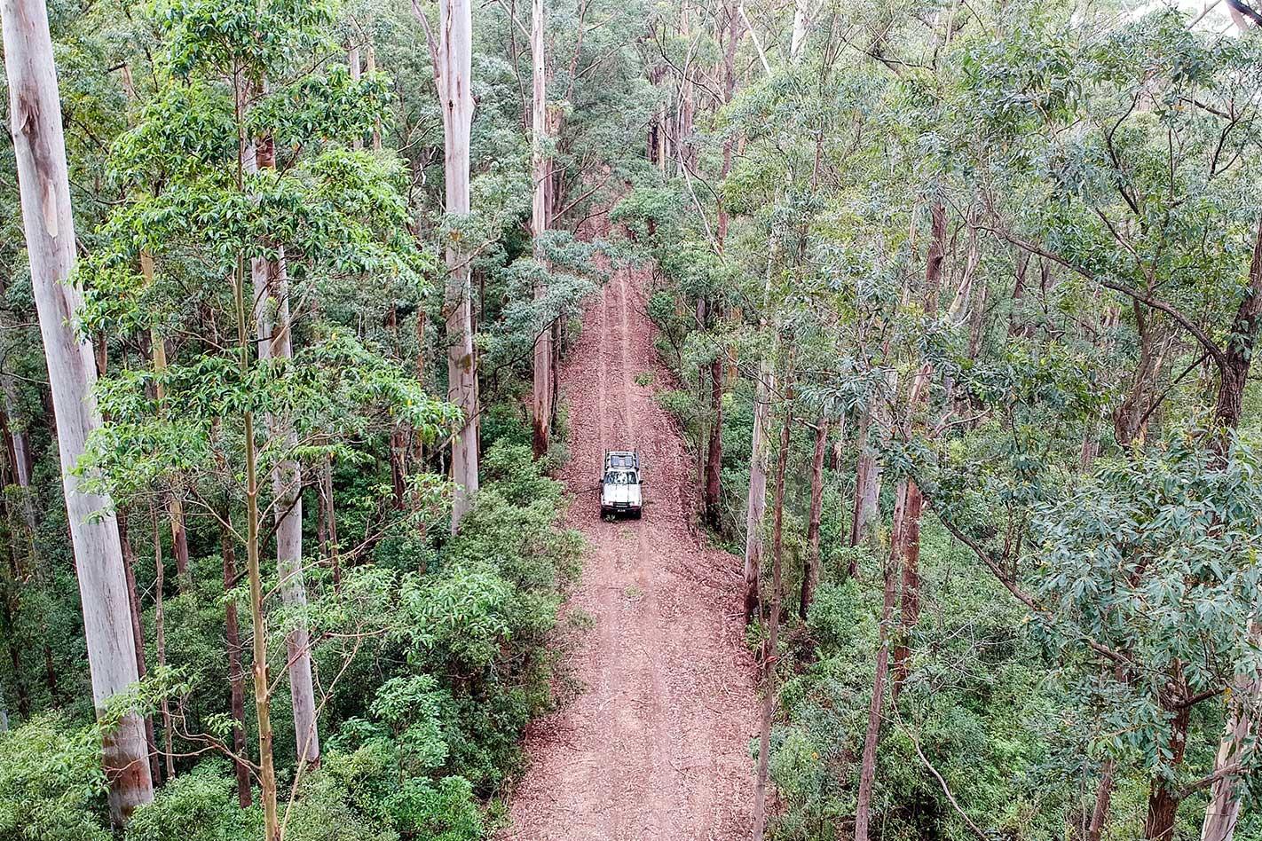 Coorabakh National Park NSW