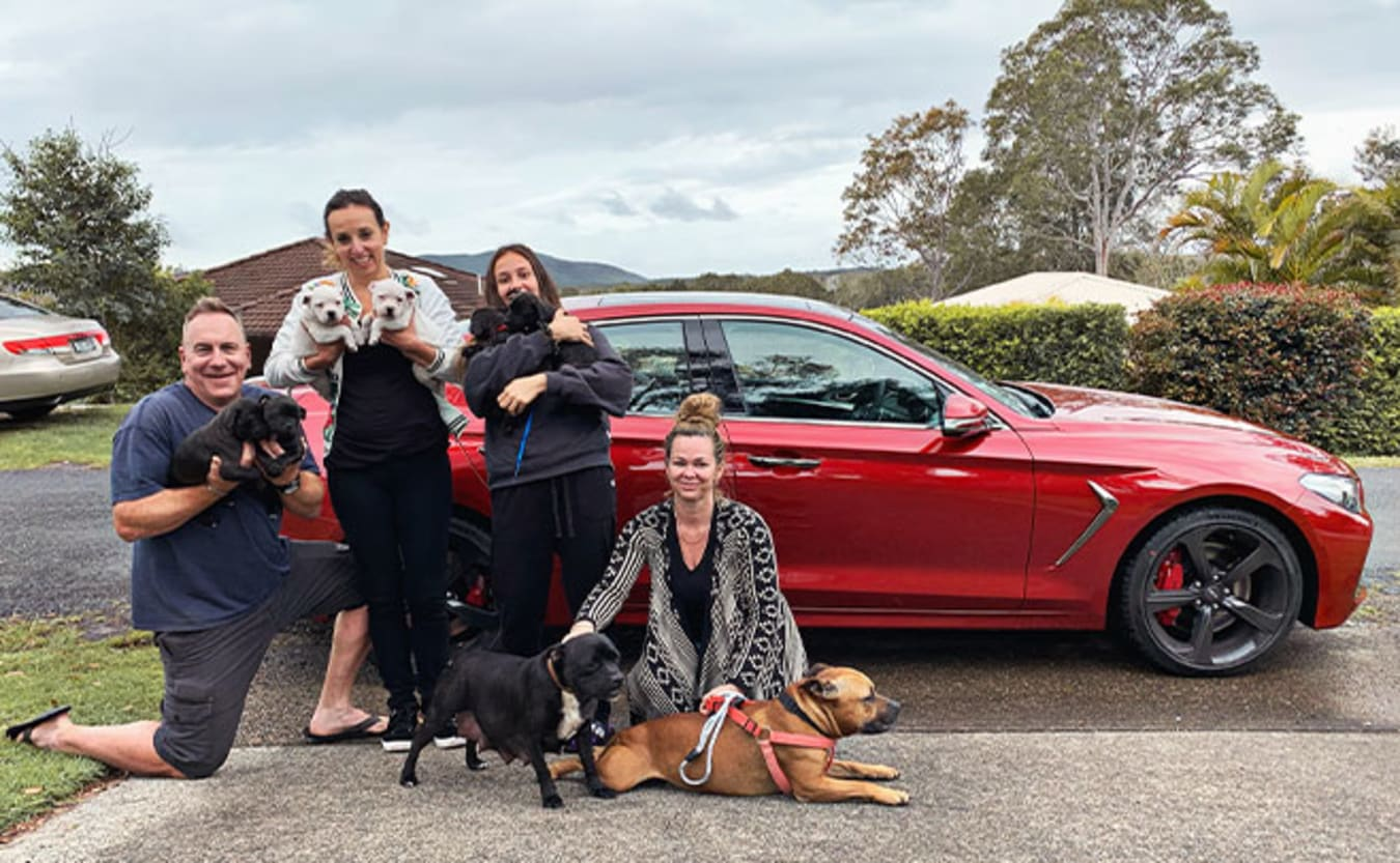 Genesis G70 family and dogs