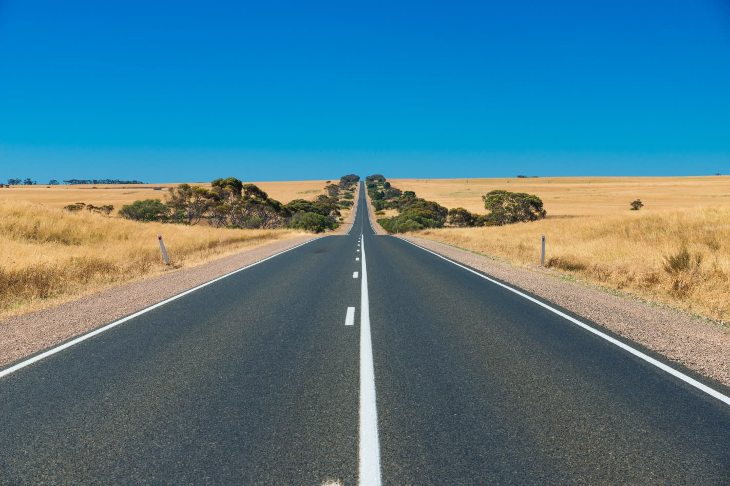 Deserted outback road
